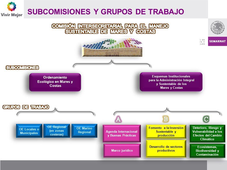 SUBCOMISIONES Y GRUPOS DE TRABAJO