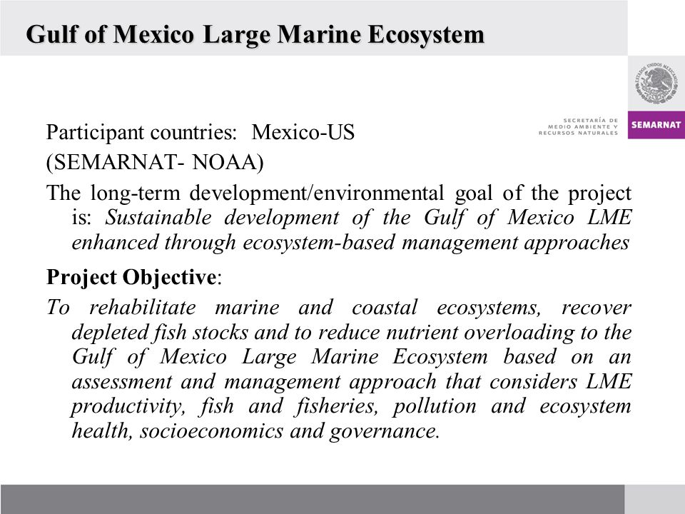 Gulf of Mexico Large Marine Ecosystem Participant countries: Mexico-US (SEMARNAT- NOAA) The long-term development/environmental goal of the project is