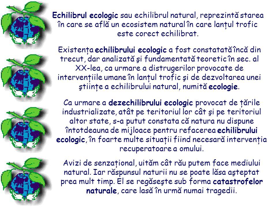 Plantele şi animalele dintr-o anumită zonă, împreună cu aerul, solul, clima şi alte elemente, formează un ecosistem.