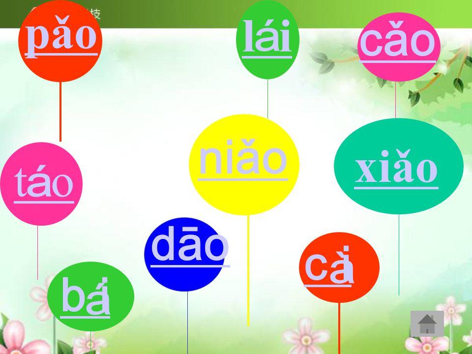 xiǎo pǎo l i niǎo t o dāo b i cǎo c i