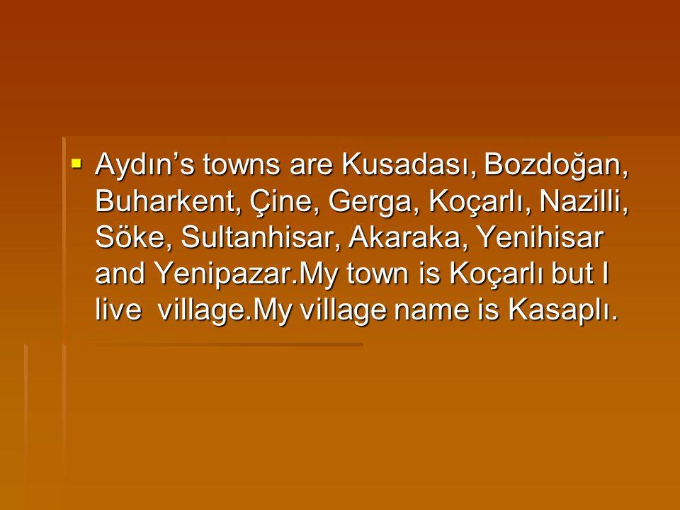  Aydın's towns are Kusadası, Bozdoğan, Buharkent, Çine, Gerga, Koçarlı, Nazilli, Söke, Sultanhisar, Akaraka, Yenihisar and Yenipazar.My town is Koçarlı but I live village.My village name is Kasaplı.