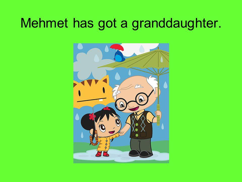Mehmet has got a granddaughter.
