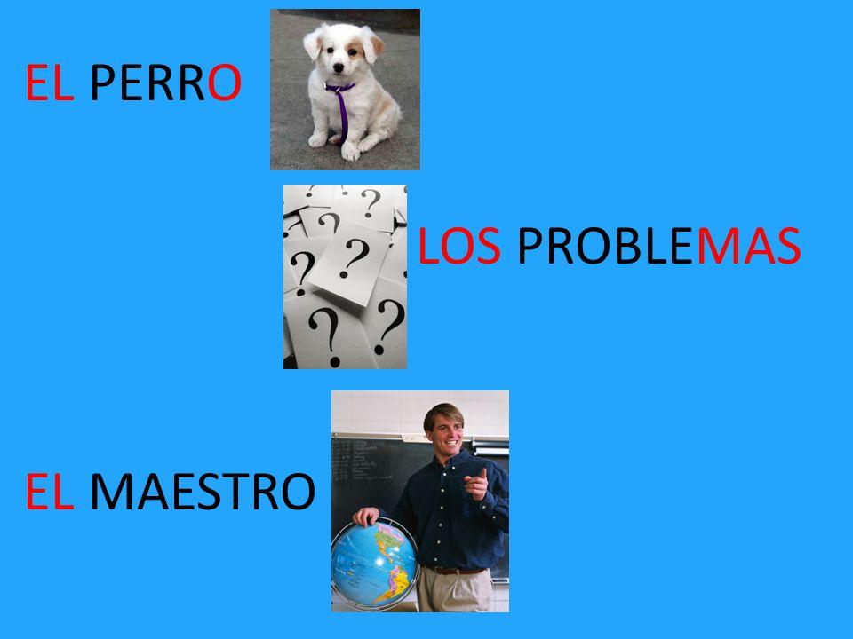 EL PERRO LOS PROBLEMAS EL MAESTRO