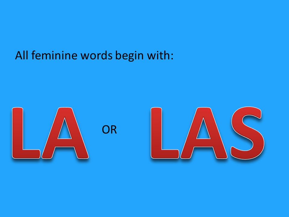 All feminine words begin with: OR