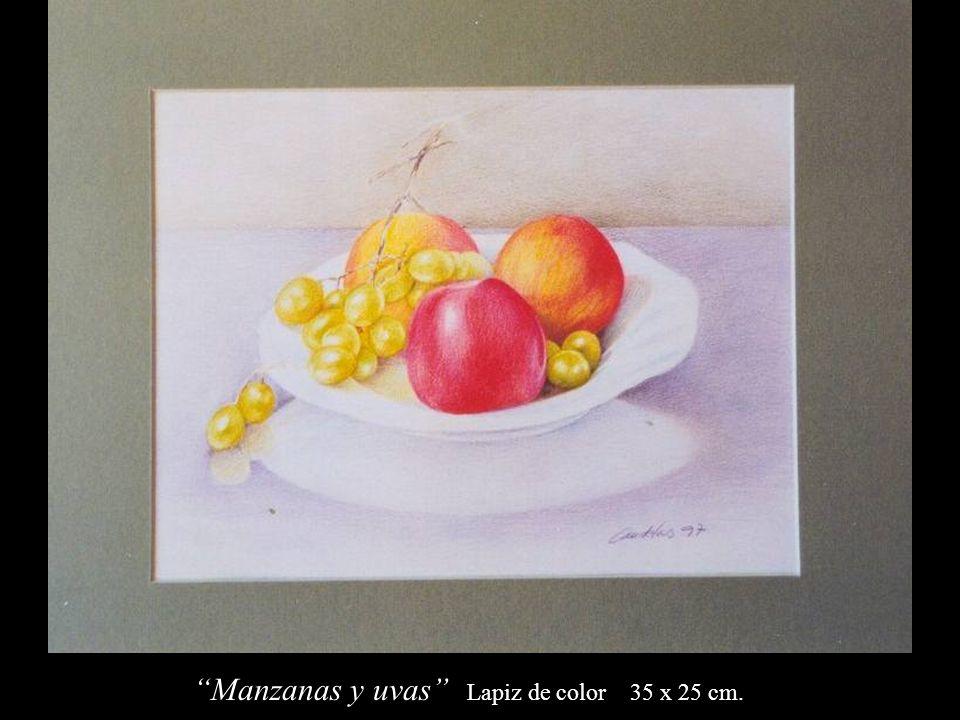 Manzanas y uvas Lapiz de color 35 x 25 cm.