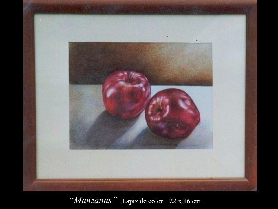 Manzanas Lapiz de color 22 x 16 cm.