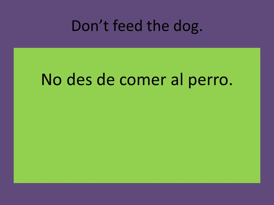 Don't feed the dog. No des de comer al perro.