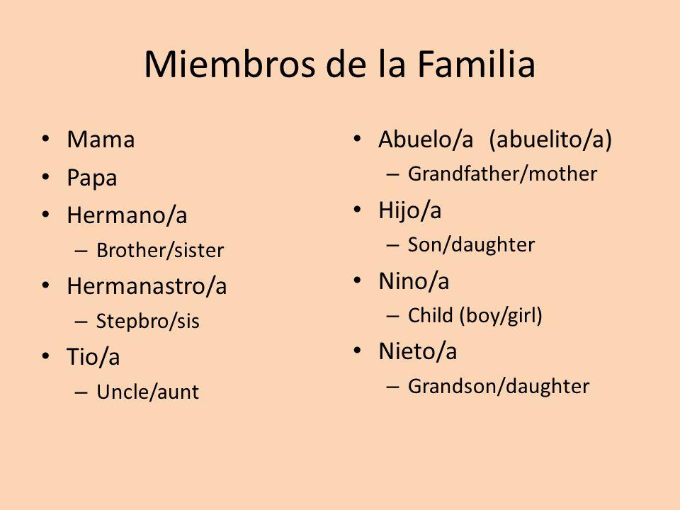Miembros de la Familia Mama Papa Hermano/a – Brother/sister Hermanastro/a – Stepbro/sis Tio/a – Uncle/aunt Abuelo/a (abuelito/a) – Grandfather/mother Hijo/a – Son/daughter Nino/a – Child (boy/girl) Nieto/a – Grandson/daughter