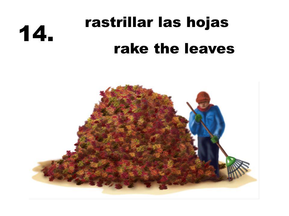 rastrillar las hojas rake the leaves 14.