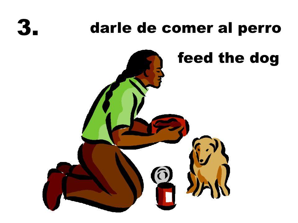 darle de comer al perro feed the dog 3.