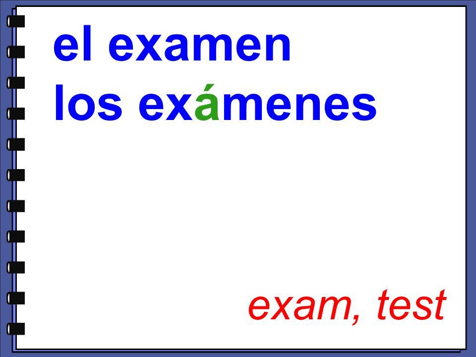 exam, test