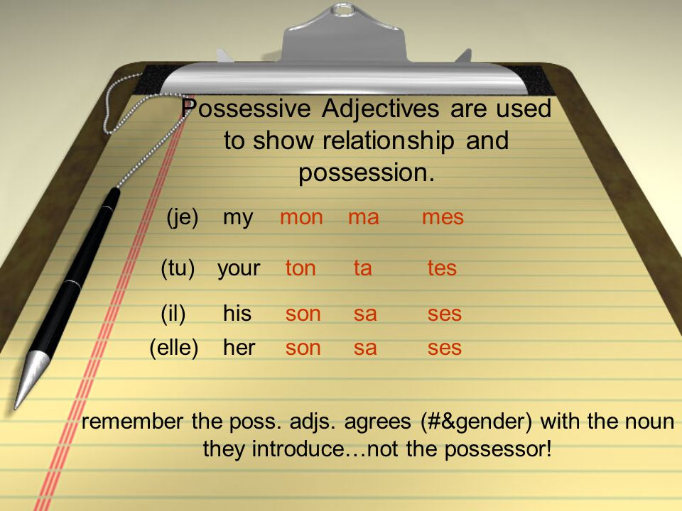 Possessive Adjectives are used to show relationship and possession.