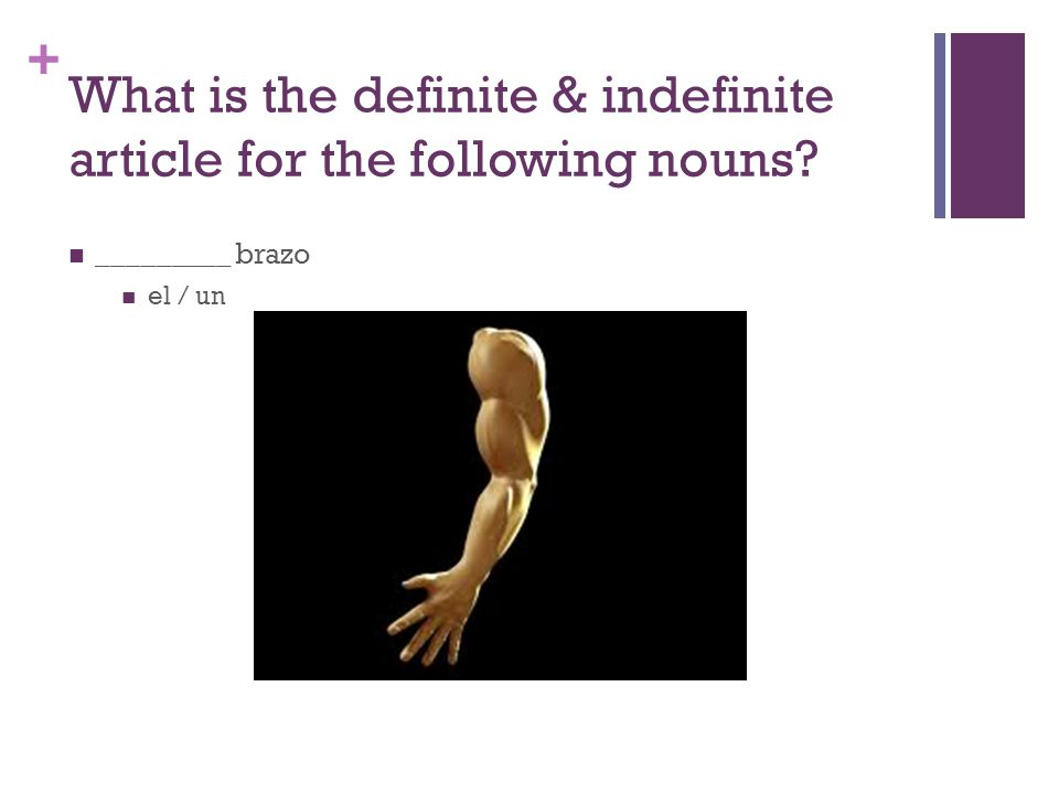 + What is the definite & indefinite article for the following nouns? _________ brazo el / un