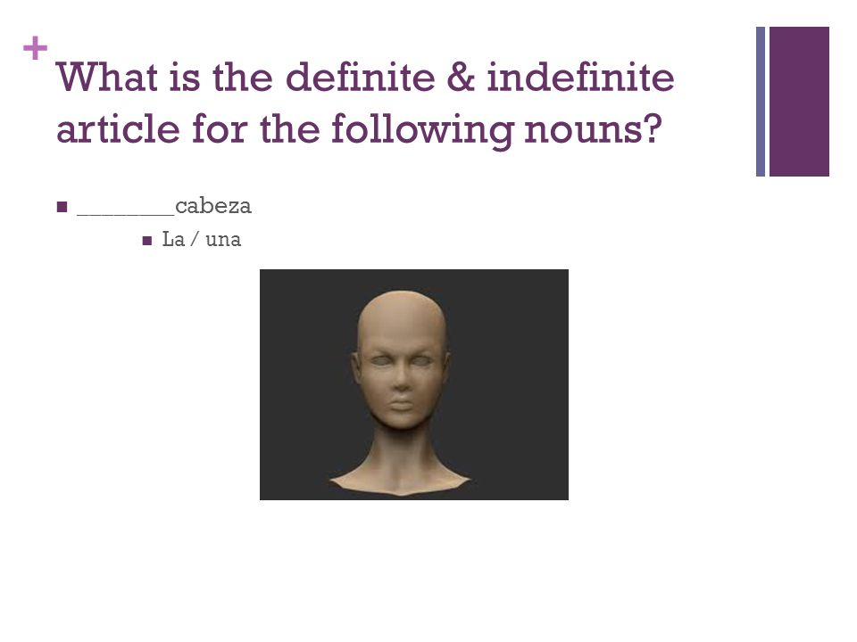 + What is the definite & indefinite article for the following nouns? ________cabeza La / una
