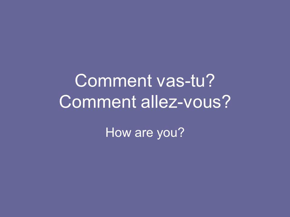 Comment vas-tu? Comment allez-vous? How are you?