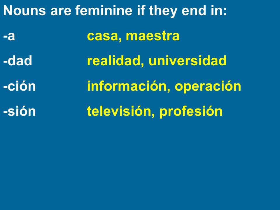 Nouns are feminine if they end in: -acasa, maestra -dadrealidad, universidad -cióninformación, operación -sióntelevisión, profesión