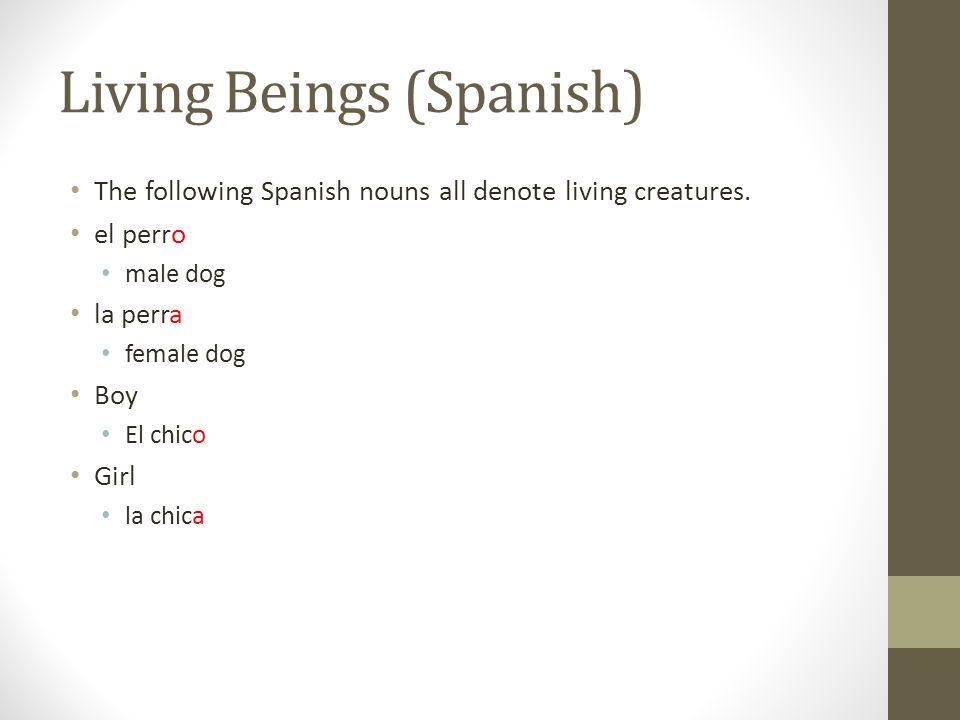 Living Beings (Spanish) The following Spanish nouns all denote living creatures. el perro male dog la perra female dog Boy El chico Girl la chica