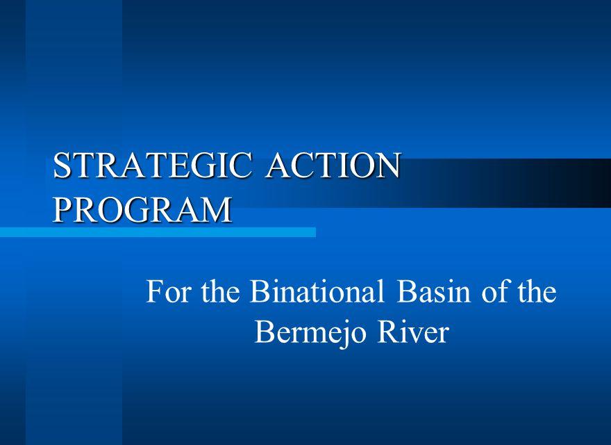 STRATEGIC ACTION PROGRAM For the Binational Basin of the Bermejo River