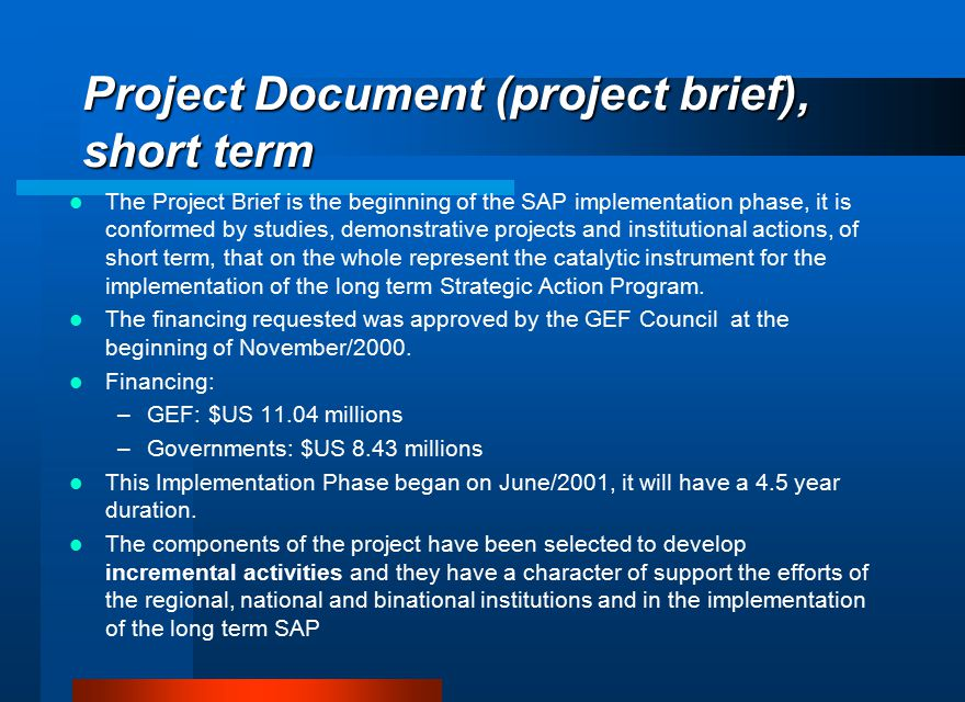Project Document (project brief), short term The Project Brief is the beginning of the SAP implementation phase, it is conformed by studies, demonstra