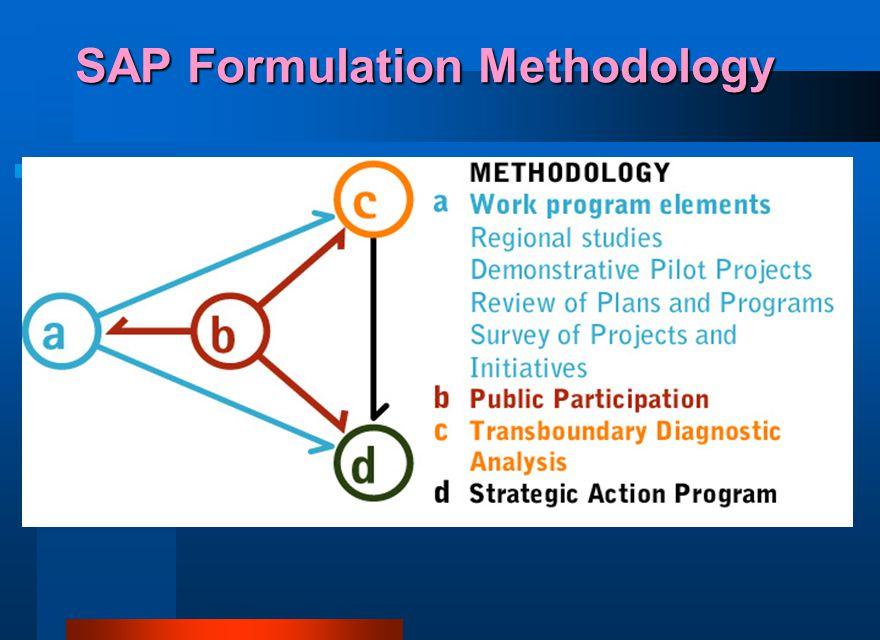 SAP Formulation Methodology