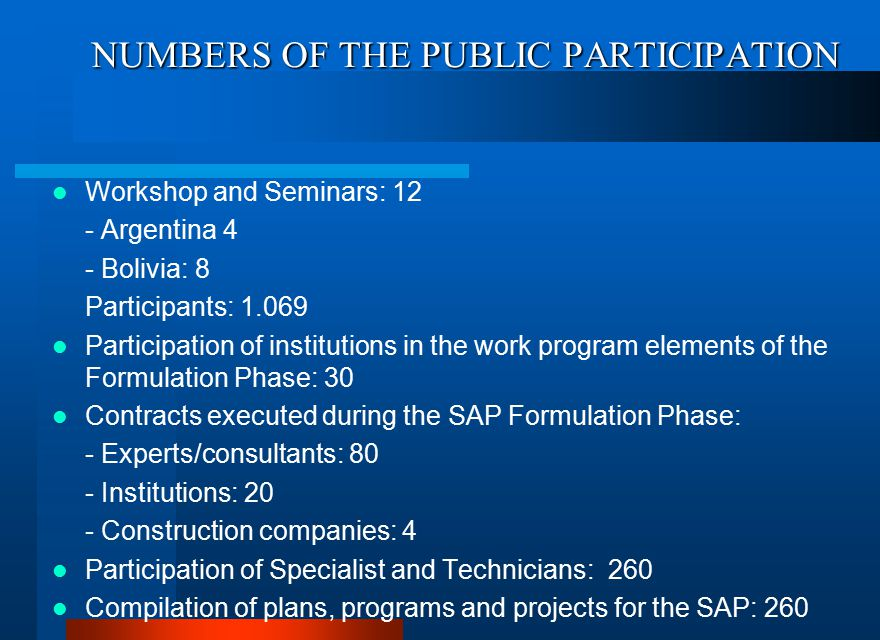 NUMBERS OF THE PUBLIC PARTICIPATION Workshop and Seminars: 12 - Argentina 4 - Bolivia: 8 Participants: 1.069 Participation of institutions in the work program elements of the Formulation Phase: 30 Contracts executed during the SAP Formulation Phase: - Experts/consultants: 80 - Institutions: 20 - Construction companies: 4 Participation of Specialist and Technicians: 260 Compilation of plans, programs and projects for the SAP: 260