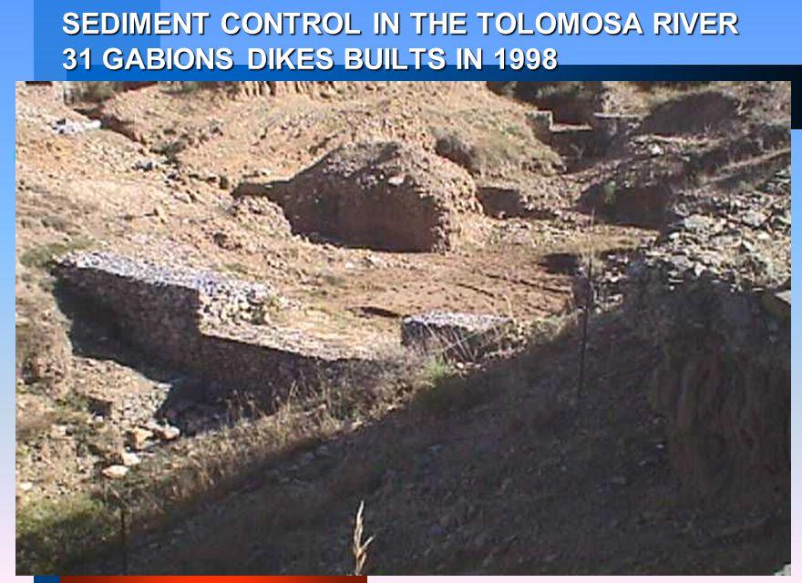 SEDIMENT CONTROL IN THE TOLOMOSA RIVER 31 GABIONS DIKES BUILTS IN 1998