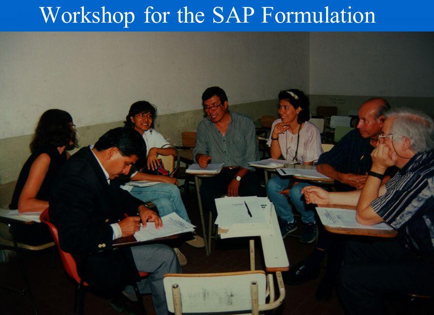 Workshop for the SAP Formulation