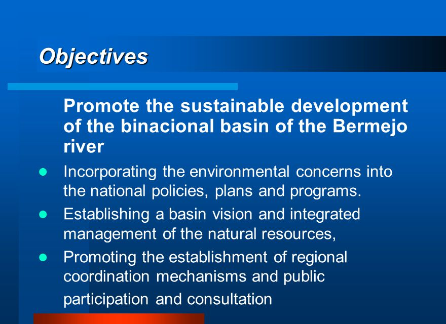 Objectives Promote the sustainable development of the binacional basin of the Bermejo river Incorporating the environmental concerns into the national policies, plans and programs.