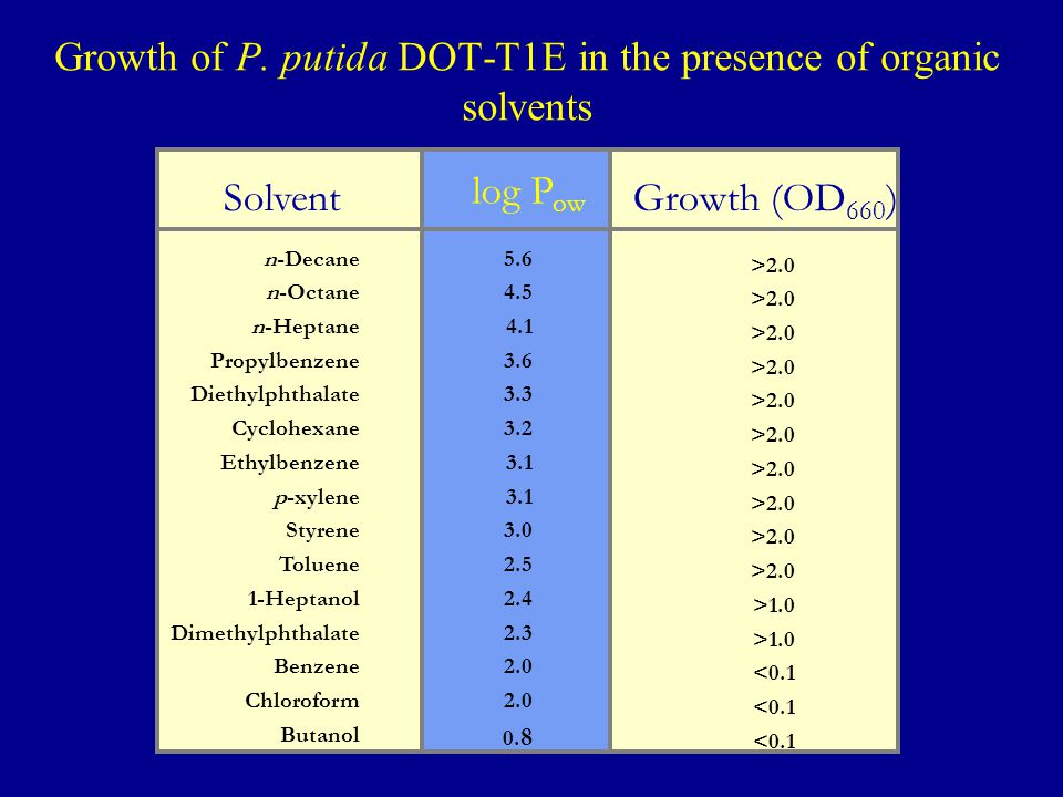 Growth of P. putida DOT-T1E in the presence of organic solvents Solvent log P ow Growth (OD 660 ) n-Decane n-Octane n-Heptane Propylbenzene Diethylpht