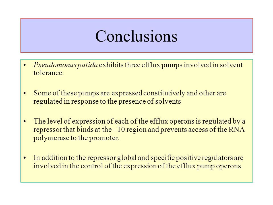 Conclusions Pseudomonas putida exhibits three efflux pumps involved in solvent tolerance.