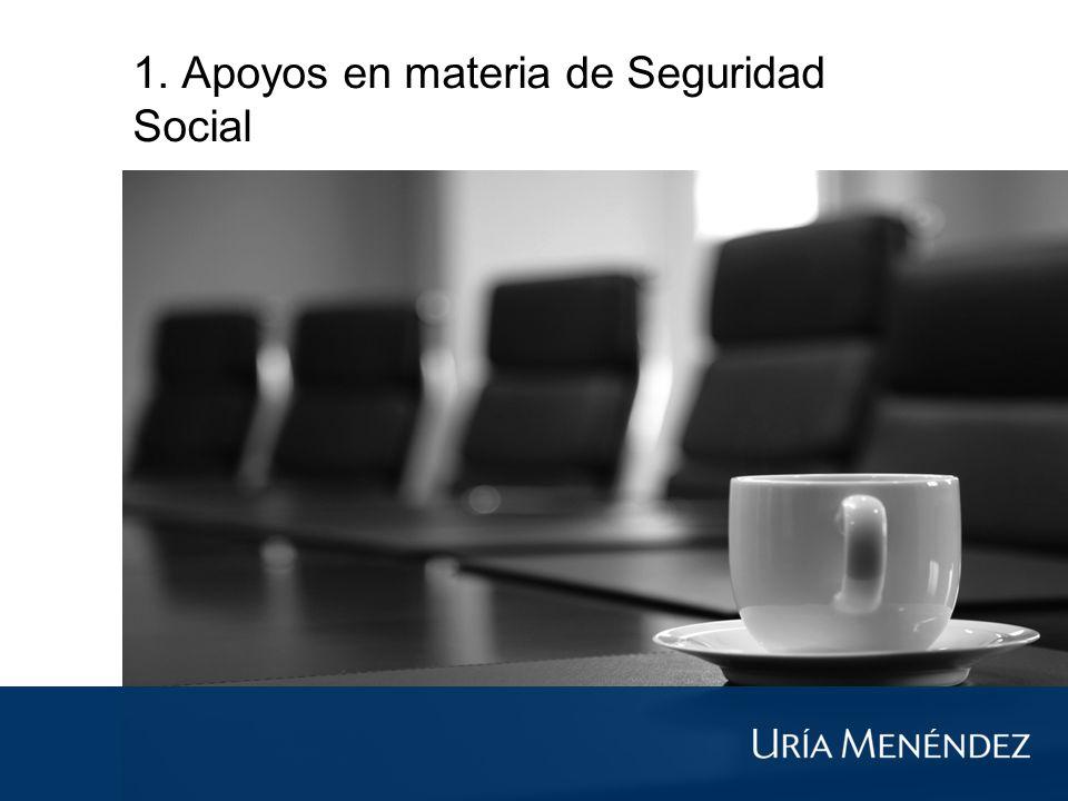 1. Apoyos en materia de Seguridad Social