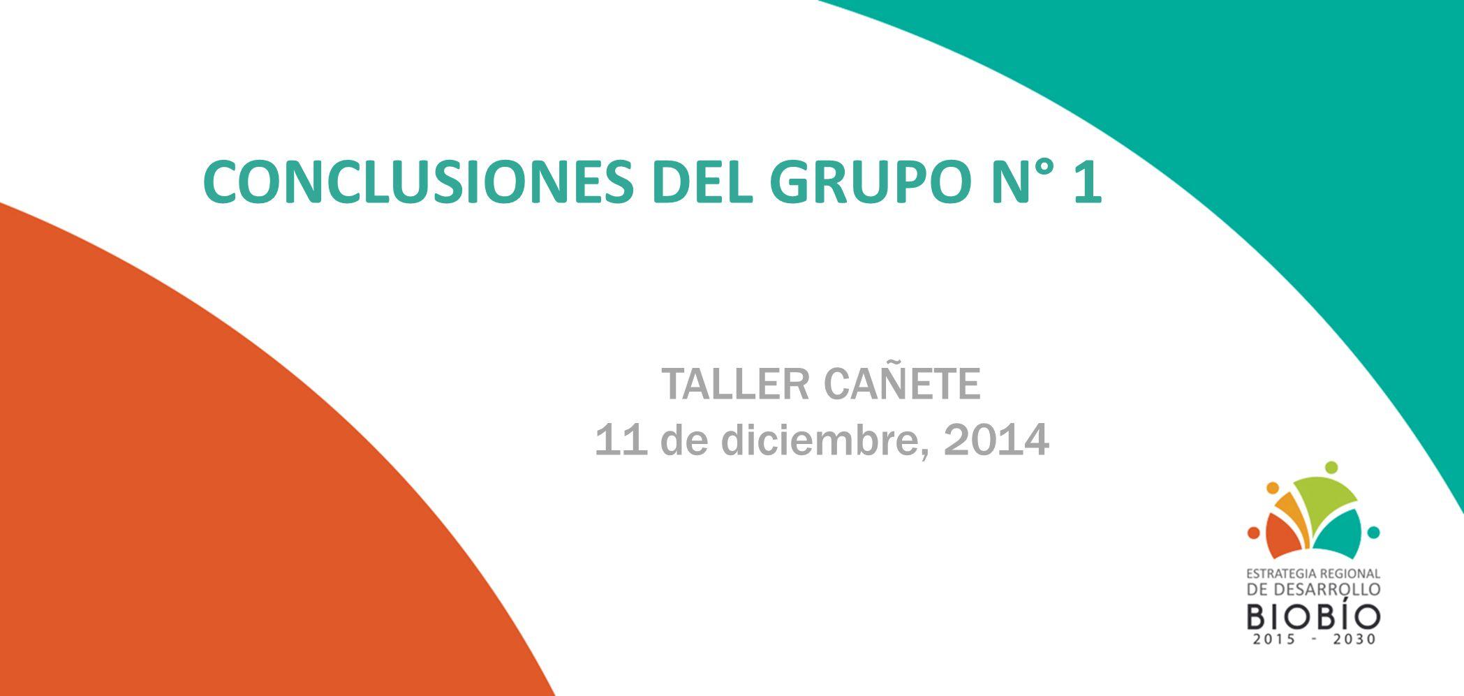 CONCLUSIONES DEL GRUPO N° 1 TALLER CAÑETE 11 de diciembre, 2014