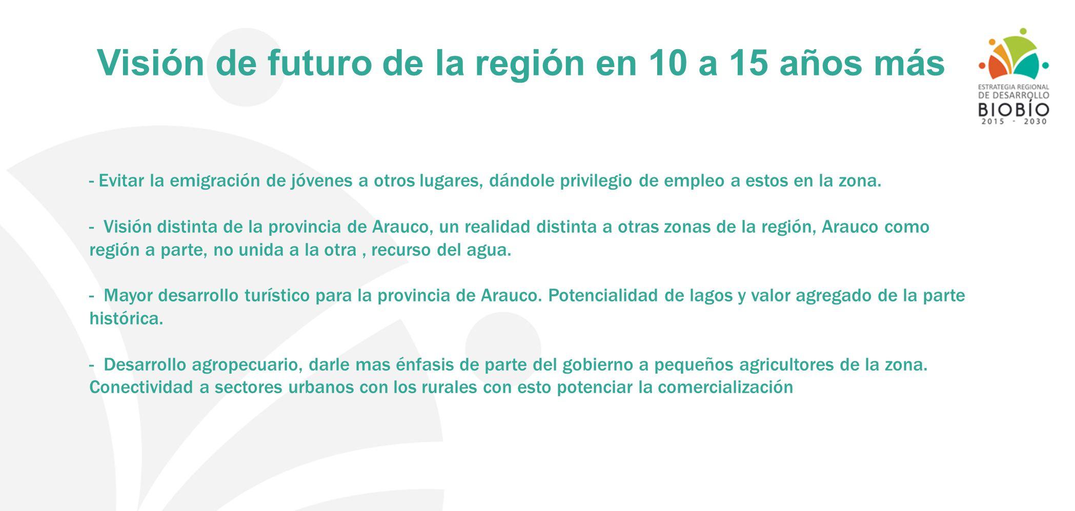 Visión de futuro de la región en 10 a 15 años más - Evitar la emigración de jóvenes a otros lugares, dándole privilegio de empleo a estos en la zona.