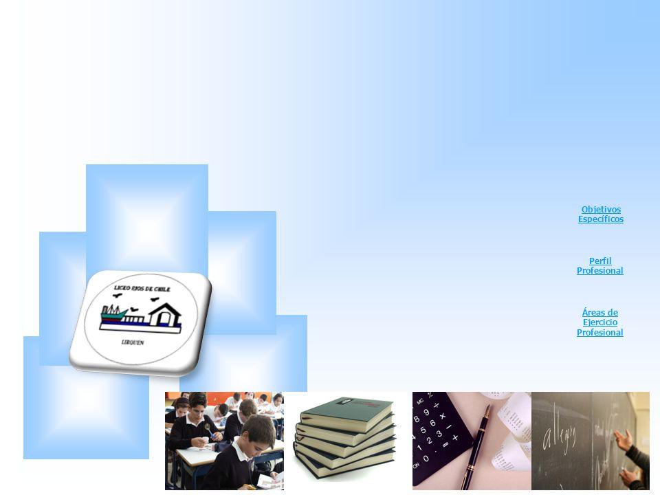 Objetivos Específicos Perfil Profesional Áreas de Ejercicio Profesional
