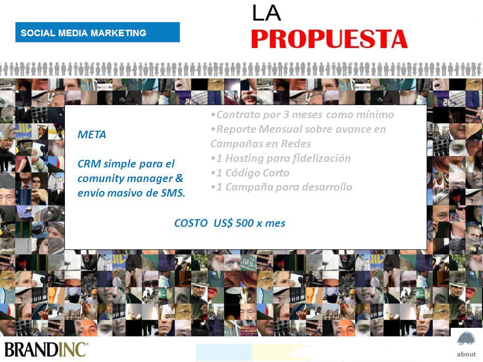 Contrato por 3 meses como mínimo Reporte Mensual sobre avance en Campañas en Redes 1 Hosting para fidelización 1 Código Corto 1 Campaña para desarrollo META CRM simple para el comunity manager & envío masivo de SMS.