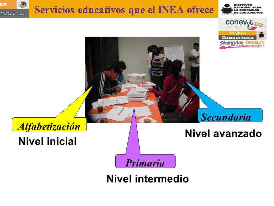 INEA Secundaria Alfabetización Primaria Nivel intermedio Nivel inicial Nivel avanzado