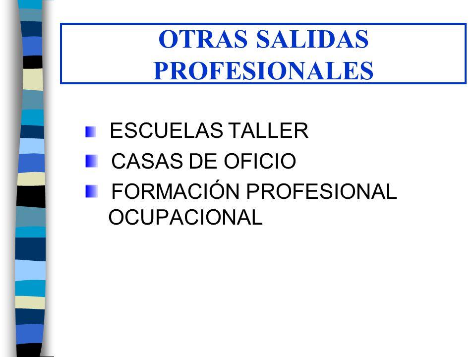 OTRAS SALIDAS PROFESIONALES ESCUELAS TALLER CASAS DE OFICIO FORMACIÓN PROFESIONAL OCUPACIONAL