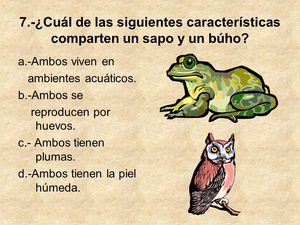 7.-¿Cuál de las siguientes características comparten un sapo y un búho? a.-Ambos viven en ambientes acuáticos. b.-Ambos se reproducen por huevos. c.-