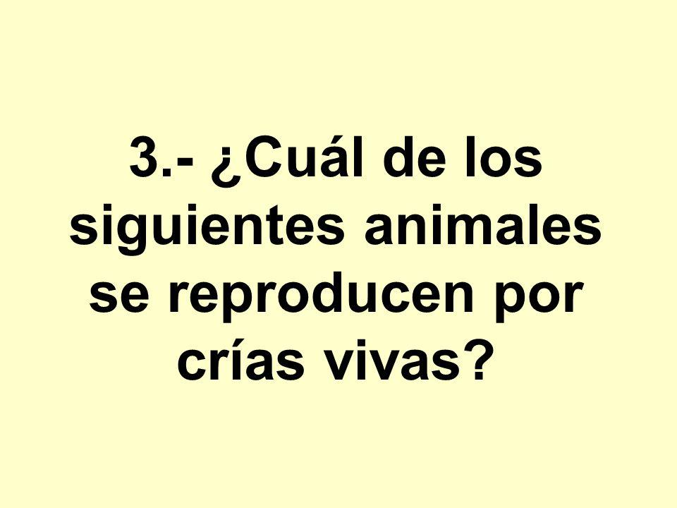 3.- ¿Cuál de los siguientes animales se reproducen por crías vivas?