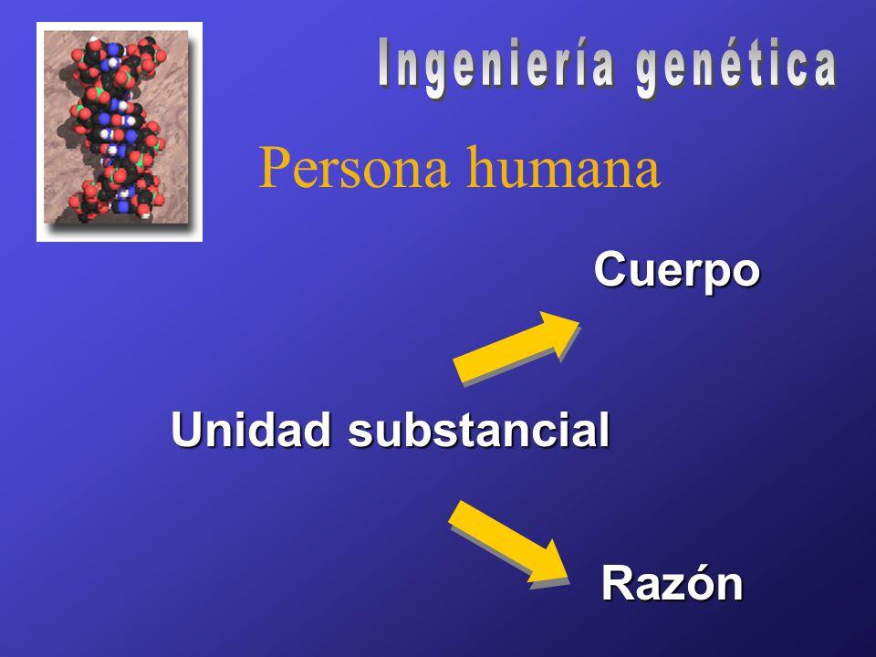 Persona humana Unidad substancial Cuerpo Razón