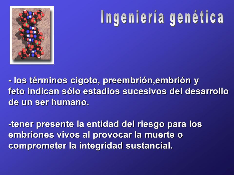 - los términos cigoto, preembrión,embrión y feto indican sólo estadios sucesivos del desarrollo de un ser humano.