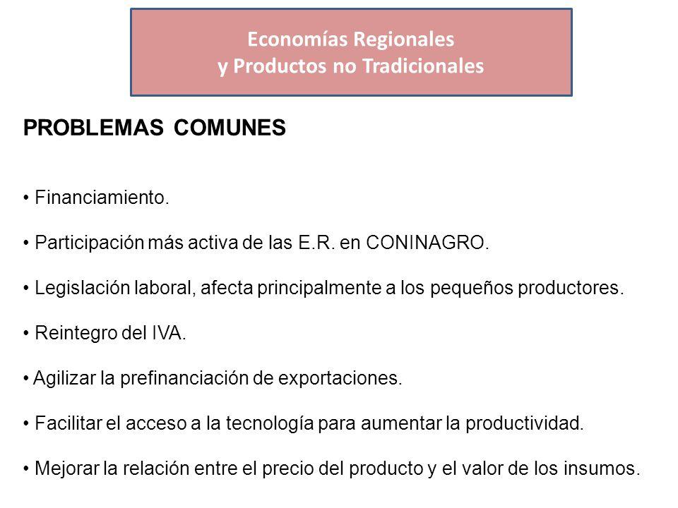 Economías Regionales PROBLEMAS COMUNES Financiamiento.