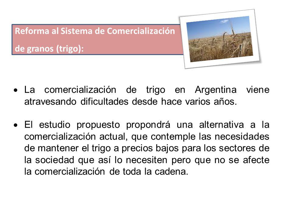 Reforma al Sistema de Comercialización de granos (trigo):  La comercialización de trigo en Argentina viene atravesando dificultades desde hace varios años.
