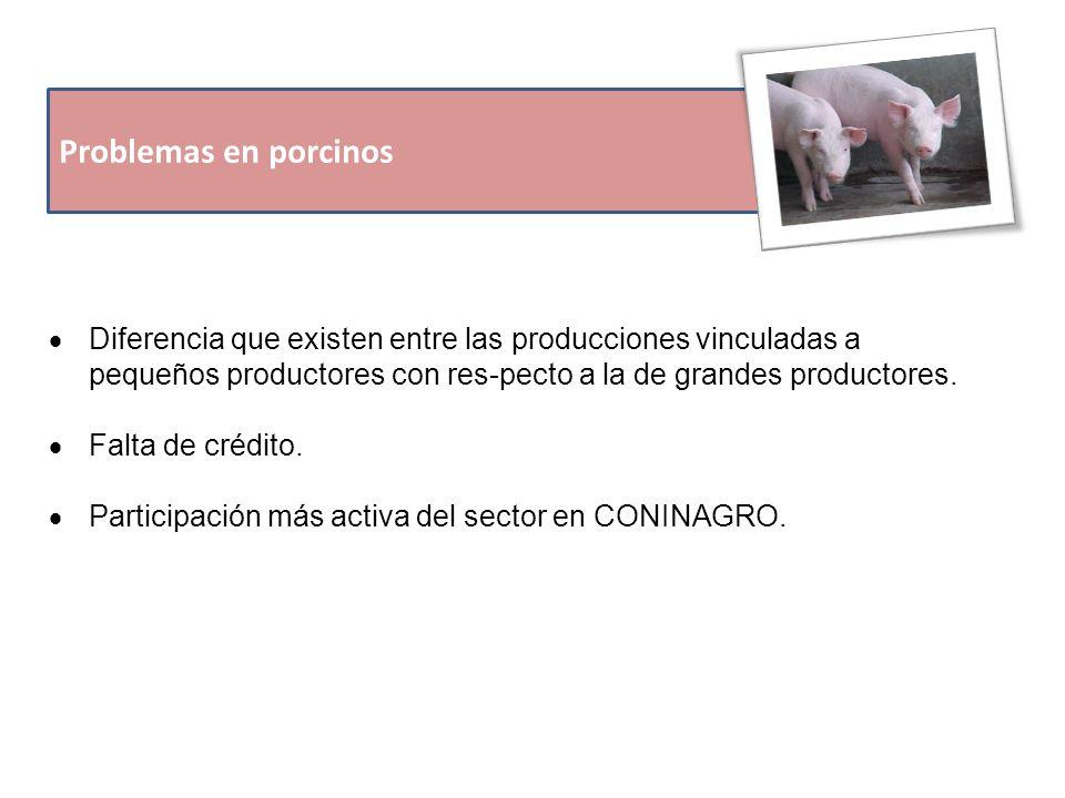 Problemas en porcinos  Diferencia que existen entre las producciones vinculadas a pequeños productores con res-pecto a la de grandes productores.