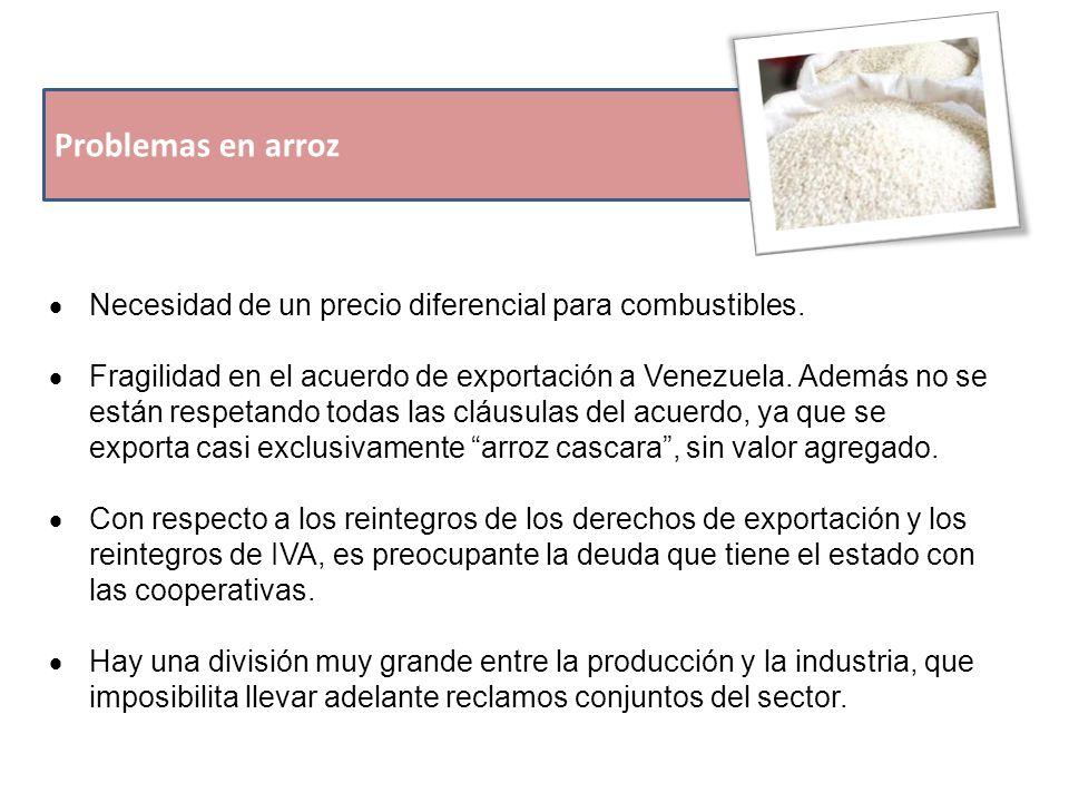 Problemas en arroz  Necesidad de un precio diferencial para combustibles.