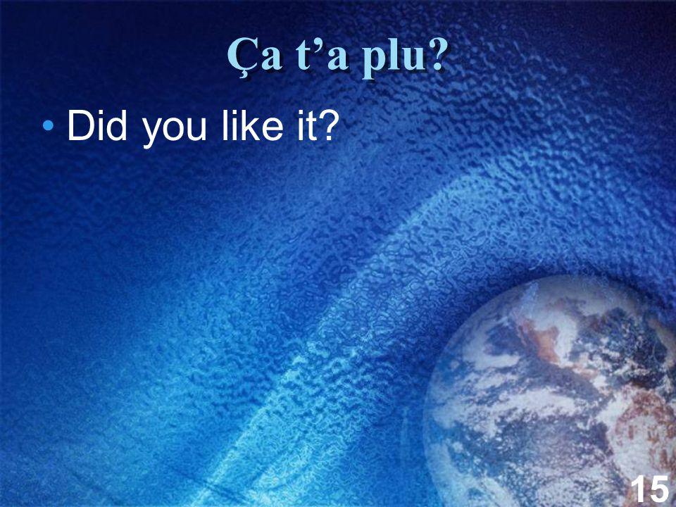 15 Ça t'a plu? Did you like it?