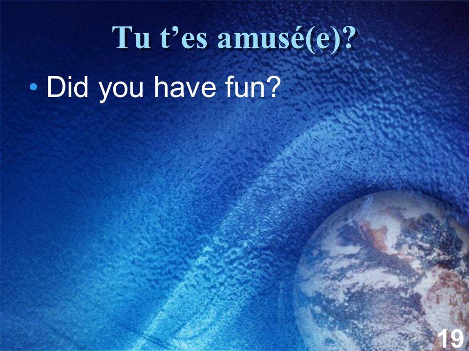 19 Tu t'es amusé(e)? Did you have fun?