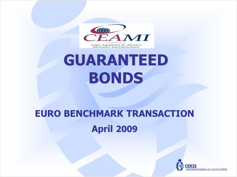 EURO BENCHMARK TRANSACTION April 2009 CEAMI GUARANTEED BONDS