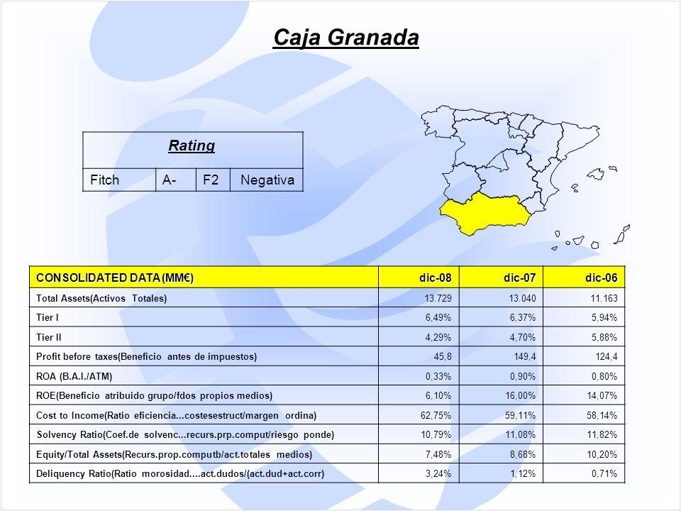 CONSOLIDATED DATA (MM€) dic-08dic-07dic-06 Total Assets(Activos Totales)13.72913.04011.163 Tier I6,49%6,37%5,94% Tier II4,29%4,70%5,88% Profit before taxes(Beneficio antes de impuestos)45,8149,4124,4 ROA (B.A.I./ATM)0,33%0,90%0,80% ROE(Beneficio atribuido grupo/fdos propios medios)6,10%16,00%14,07% Cost to Income(Ratio eficiencia...costesestruct/margen ordina)62,75%59,11%58,14% Solvency Ratio(Coef.de solvenc...recurs.prp.comput/riesgo ponde)10,79%11,08%11,82% Equity/Total Assets(Recurs.prop.computb/act.totales medios)7,48%8,68%10,20% Deliquency Ratio(Ratio morosidad....act.dudos/(act.dud+act.corr)3,24%1,12%0,71% Caja Granada Rating FitchA-F2 Negativa