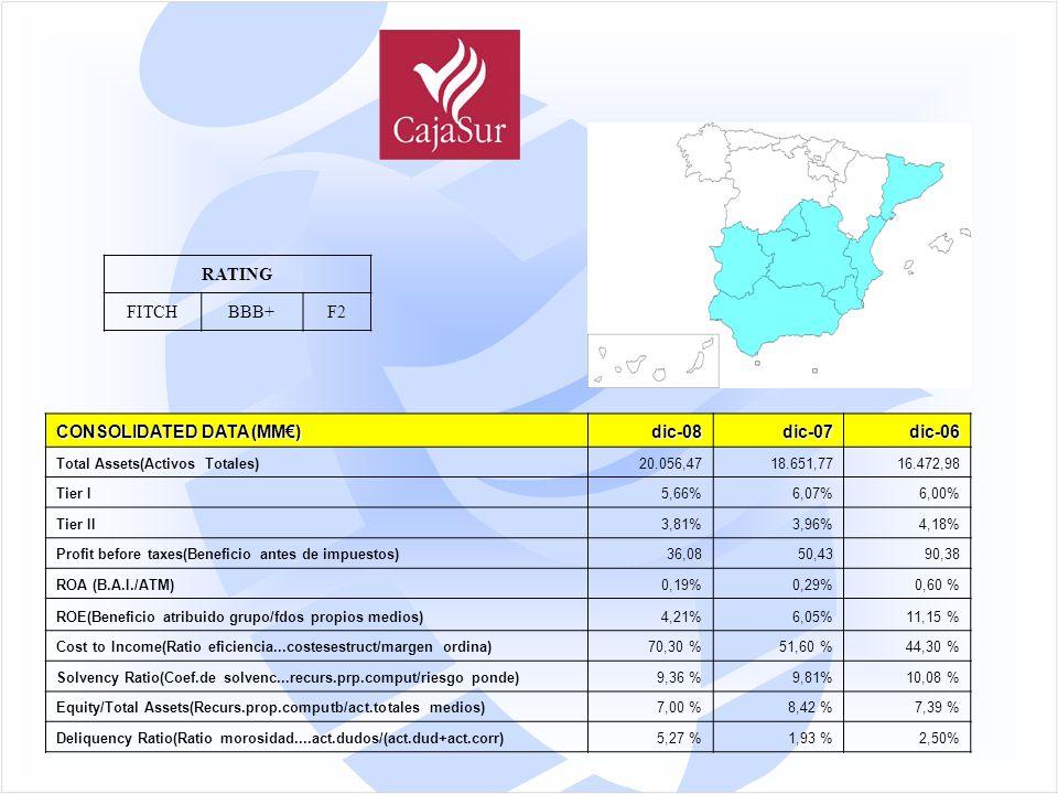 CONSOLIDATED DATA (MM€) dic-08dic-07dic-06 Total Assets(Activos Totales)20.056,4718.651,7716.472,98 Tier I5,66%6,07%6,00% Tier II3,81%3,96%4,18% Profit before taxes(Beneficio antes de impuestos)36,0850,4390,38 ROA (B.A.I./ATM)0,19%0,29%0,60 % ROE(Beneficio atribuido grupo/fdos propios medios)4,21%6,05%11,15 % Cost to Income(Ratio eficiencia...costesestruct/margen ordina)70,30 %51,60 %44,30 % Solvency Ratio(Coef.de solvenc...recurs.prp.comput/riesgo ponde)9,36 %9,81%10,08 % Equity/Total Assets(Recurs.prop.computb/act.totales medios)7,00 %8,42 %7,39 % Deliquency Ratio(Ratio morosidad....act.dudos/(act.dud+act.corr)5,27 %1,93 %2,50% RATING FITCHBBB+F2